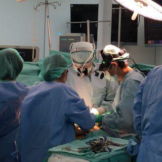 内視鏡による不整脈手術 endoscopic MAZE